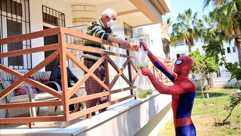 spiderman turki