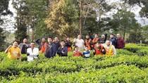 Rasanya Kangen Touring Naik Motor ke Gunung Mas via Puncak