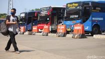 Omzet Bisnis Otobus Melayang Rp 15 M di Tengah Larangan Mudik