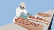 Corona di Pengolahan Daging Babi AS Ini Menyebar Cepat Seperti Kebakaran Semak