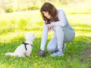 Mantan Model Didiskriminasi Karena Muslim, Disuruh Bos Pungut Kotoran Anjing