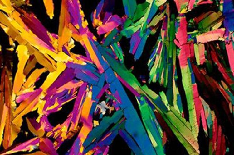 Kapur sampai Jus Jeruk, Penampakan yang Super Keren di Bawah Mikroskop