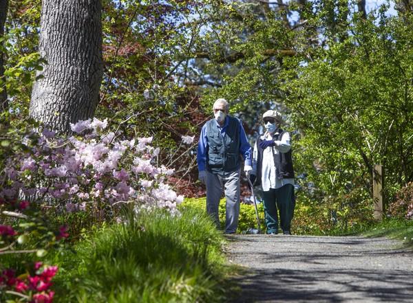 Warga menikmati bunga musim semi di Oregon, AS (11/4/2020). Musim semi tahun ini tidak seceria seperti biasanya karena Corona. Chris Pietsch/The Register-Guard via AP, File