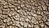 Lebih Ngeri dari Corona, Kondisi Bumi 50 Tahun Lagi Diprediksi Tak Layak Huni