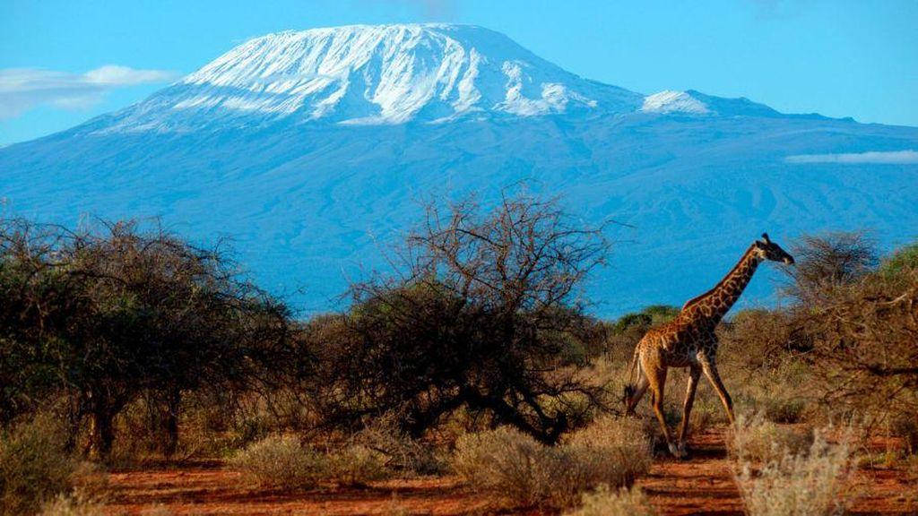 7 Gunung Tertinggi di Dunia dan Keistimewaannya