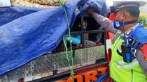 Angkut Orang di Bak Belakang, Pikap Muatan Kerupuk Dicegat Polisi
