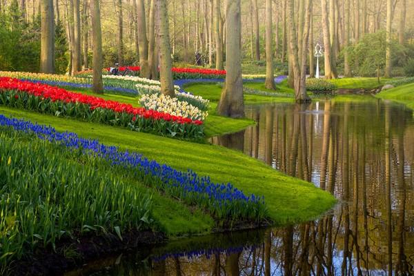 Melihat air yang memantulkan pepohonan dan bunga memberi perasaan tenang. Jika anda melihat dari dekat, Anda dapat melihat seorang tukang kebun melakukan pekerjaannya. Karena bahkan tanpa ada orang yang mengunjungi kebun, pekerjaan tetap berjalan.