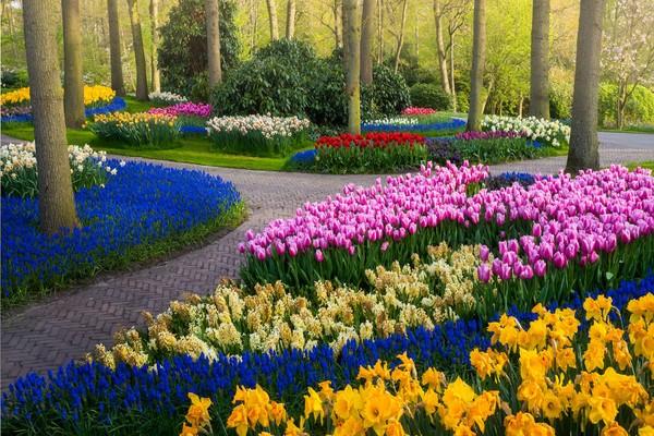 Jalan kecil itu selaras dengan pepohonan dan berbagai bunga di sekelilingnya.