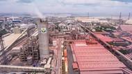 Pupuk Indonesia Setorkan Pajak dan Dividen Rp 8 Triliun