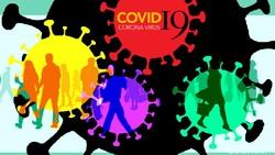 Santri dari Jatim Jadi Pasien Positif Corona Keempat di Enrekang Sulsel