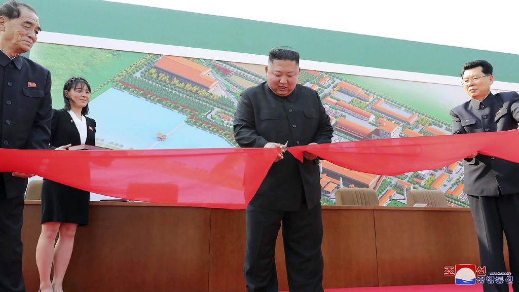 Kim Jong Un Masih Hidup, Twitterland Ramai Lagi