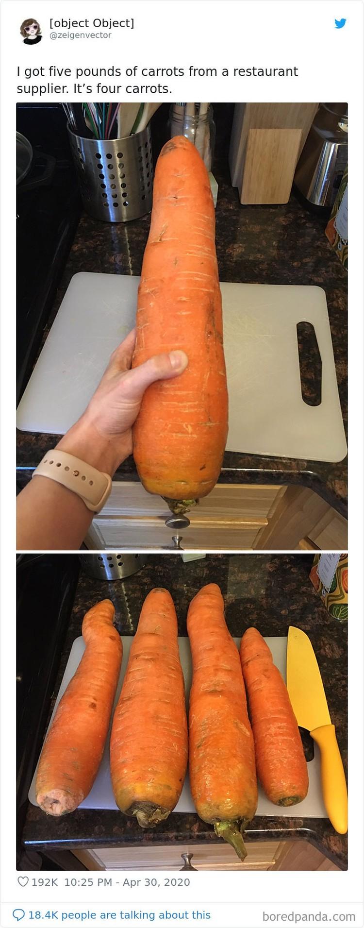 Disaat kondisi seperti sekarang ini, banyak orang memanfaatkan untuk berbelanja online. Termasuk membeli sayuran. Tapi, uniknya mereka justru dapat ukuran yang tak biasa.