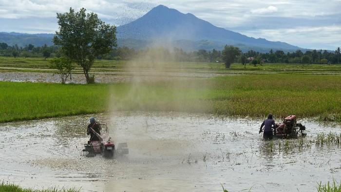 Petani membajak sawah menggunakan traktor tangan di Desa Samahani, Kecamatan Kuta Malaka, Kabupaten Aceh Besar, Aceh, Sabtu (2/5/2020). Pemerintah memutuskan akan menyalurkan bantuan langsung tunai (BLT) kepada sebanyak 2,44 juta petani tergolong miskin sebesar Rp600 ribu dan berupa sarana  pertanian agar mereka bisa bertahan hidup di tengah wabah COVID-19. ANTARA FOTO/Ampelsa/wsj.