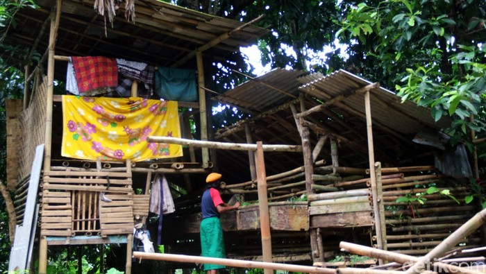 Ujun Juhaeni (50) warga Parungkuda, Sukabumi, Jabar, sudah 3 tahun tinggal satu atap dengan kambing titipan milik kenalannya. Begini kondisinya.