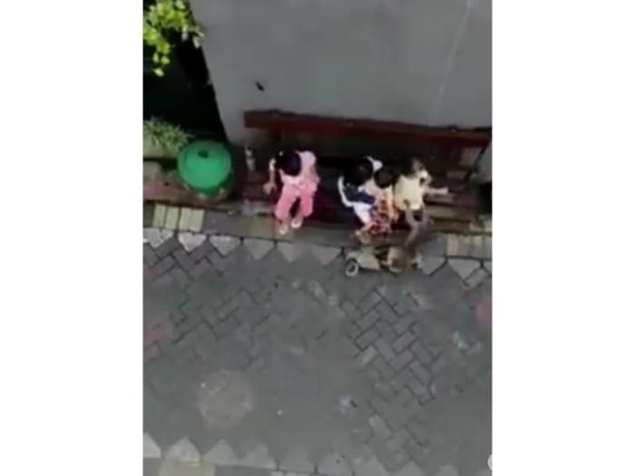 Video pertunjukan topeng monyet viral di media sosial. Dalam video itu, si monyet menarik dan menyeret anak kecil hingga beberapa meter.
