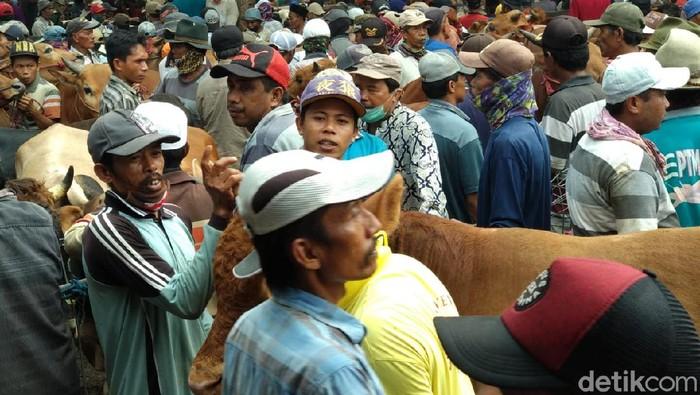 pasar hewan di probolinggo ditutup