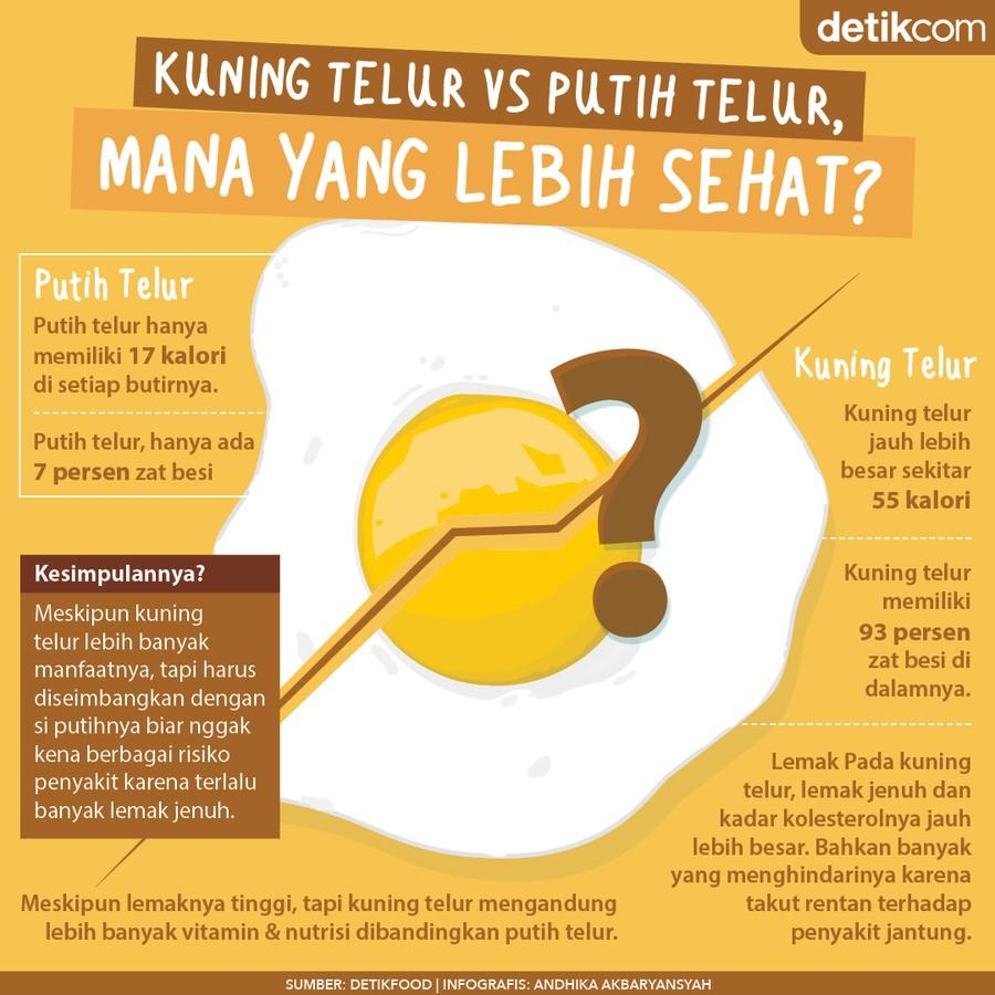 kuning telur vs putih telur