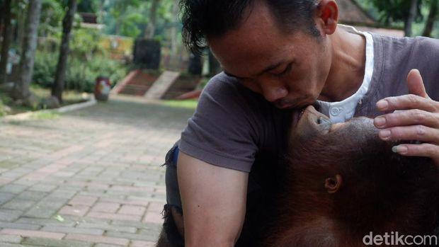 Kondisi kebun binatang Serulingmas di Banjarnegara saat pandemi Corona, Selasa (5/5/2020).