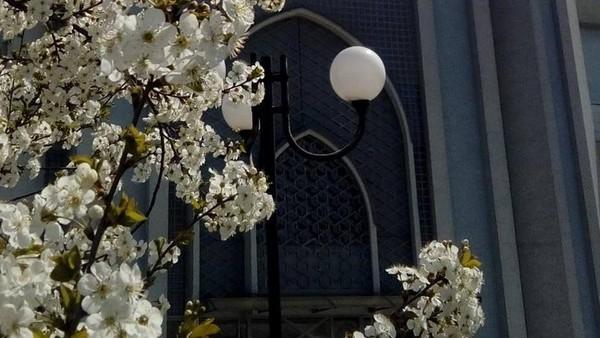 Desain interior Istiklal Dzamija memang berbeda dengan masjid-masjid kebanyakan di Eropa, yang sebagian besar merupakan peninggalan Kerajaan Ottoman pada sekitar abad ke-12 hingga 15. Istiklal Dzamija lebih terlihat seperti sebuah masjid Indonesia, baik terlihat dari luar maupun di dalamnya.