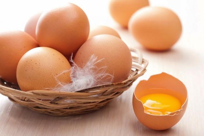 telur infertil