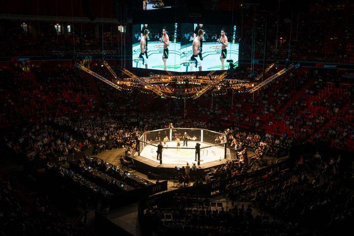 Mengenal 10 Gerakan Terlarang di UFC (Getty Images)
