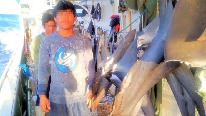 ABK Indonesia di kapal China: Tidur hanya tiga jam, makan umpan ikan, hingga pengalaman pahit yang sulit dilupakan melarung jenazah teman