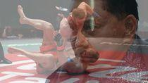 Hendropriyono: Ini Saatnya Rekrut Atlet MMA untuk Ringkus Pelanggar PSBB