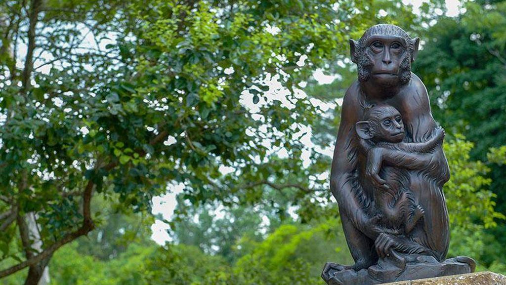 Patung-patung Ini Penghormatan untuk Hewan Percobaan Sains