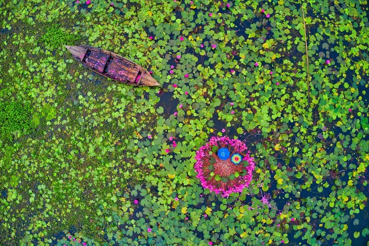 Musim semi kerap dinanti oleh sejumlah orang. Pasalnya di musim itu bunga-bunga bermekaran dengan beragam warna yang memesona. Berikut fotonya.