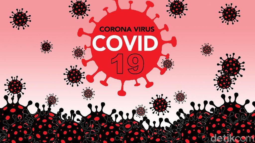Gugus Tugas: 61 Kabupaten Kota Belum Terinfeksi Corona, 43 Zona Hijau