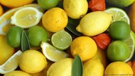 COVID-19, Pentingnya Meningkatkan Sistem Kekebalan Tubuh dengan Vitamin