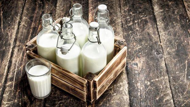 Pengantar susu