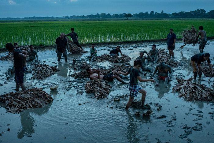 Ritual unik digelar warga Filipina dengan membenamkan diri ke dalam lumpur sambil mengenakan baju dari daun pisang. Penasaran?