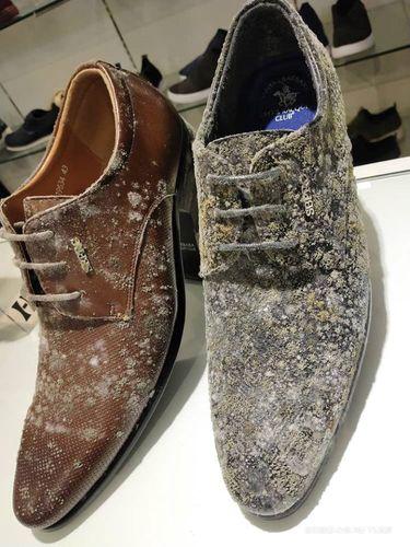 Tas dan sepatu penuh jamur karena toko ditutup