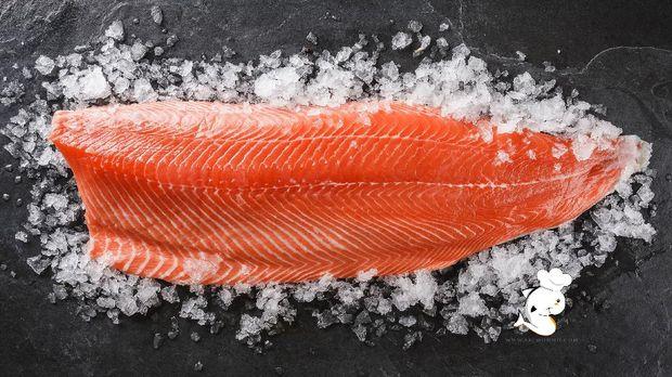 SalmonHu.com-Salmon fillet fresh sashimi grade
