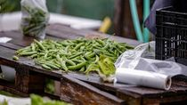 Aksi Berbagi Relawan di Solo Lewat Jemuran Sayuran