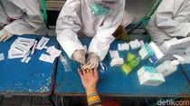 Tes Antibodi Ini Diklaim Mampu Deteksi dengan Akurasi 100 Persen