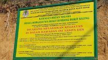 Mengunjungi SM Rimbang Baling di Riau, Masih Ada Illegal Logging saat Pandemi
