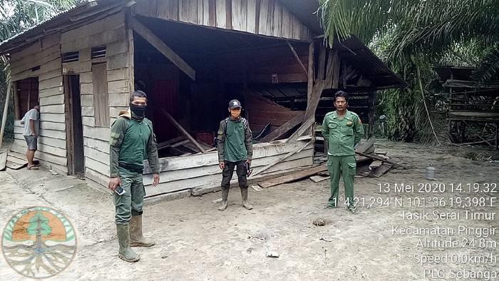 Rumah dan kebun warga di Bengkalis, Riau dirusak kawanan gajah liar (dok. BBKSDA Riau)