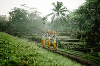 Subak adalah sistem pengairan sawah yang digunakan masyarakat Bali secara tradisional. Sistem subak pun masuk sebagai salah satu warisan budaya dunia pada tanggal 29 Juni 2012 lho. Jadi hari ini adalah Peringatan Subak. (Kemenpar)