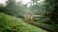 Seperti Ini Keindahan Sawah Sistem Subak di Bali