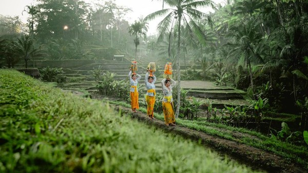 Warisan budaya keempat adalah Sistem Subak Bali sebagai Manifestasi Filosofi Tri Hita Karana. (Kemenpar)