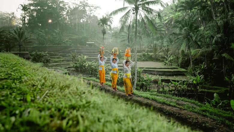 Sistem pengairan subak Bali