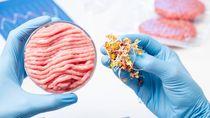 Terpopuler Sepekan: Heboh Oreo Supreme hingga Kehalalan Daging Babi Vegetarian