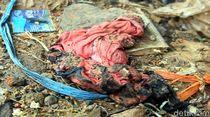 Ceceran Pakaian hingga Rambut di TKP Perempuan Dibakar Hidup-hidup