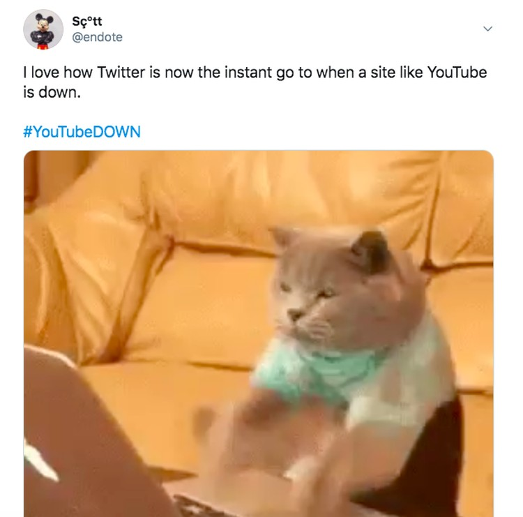 Meme YouTube down