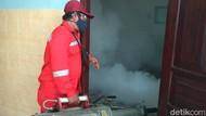 Angka Penderita DBD di Situbondo Tembus 108 Kasus, Satu Balita Meninggal