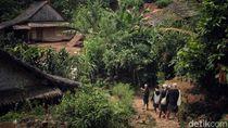 Menikmati Hijaunya Alam Suku Adat Baduy Sebelum Corona