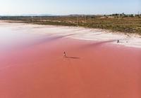 Inilah danau palingpink yang memukau, Las Salinas de Torrevieja di Spanyol. Warna pink danau dihasilkan oleh melimpahnya mikroorganisme. Ribuan flamingo akan memadatinya saat musim kawin tiba.