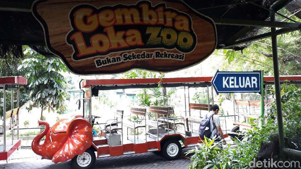 Gembira Loka Zoo Yogya Potong Gaji Karyawan Imbas Corona